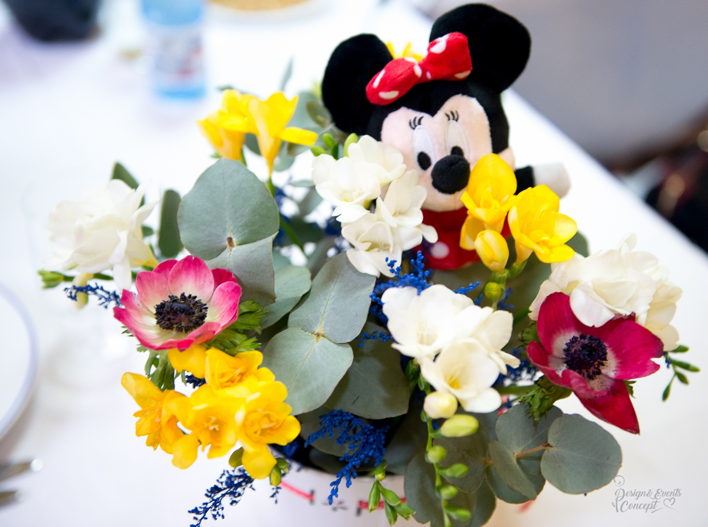 Botez Tematic – Mickey si Minnie Mouse